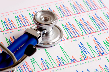 The Human Genome (articles)