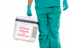 Organ Transplantation (article)