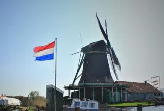 Dutch euthanasia up 13% in 2012